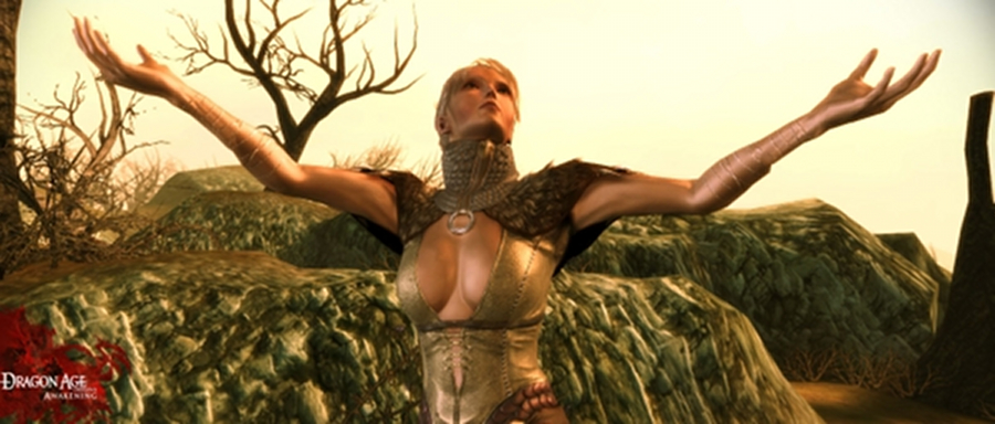 dragon-age-origins-awakening-2