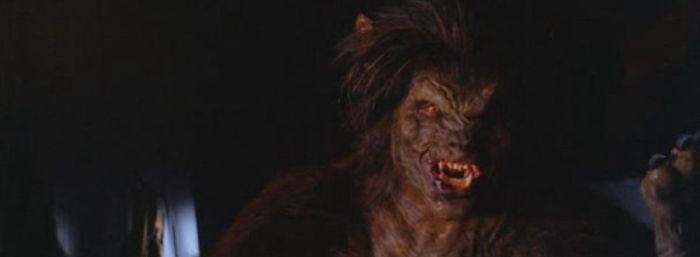 Night-Of-The-Werewolf